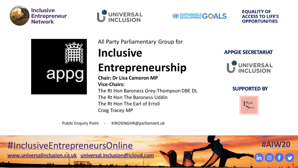 APPG Chair, Vice Chair, Secretariat Universal Inclusion Supported by Pink Shoe